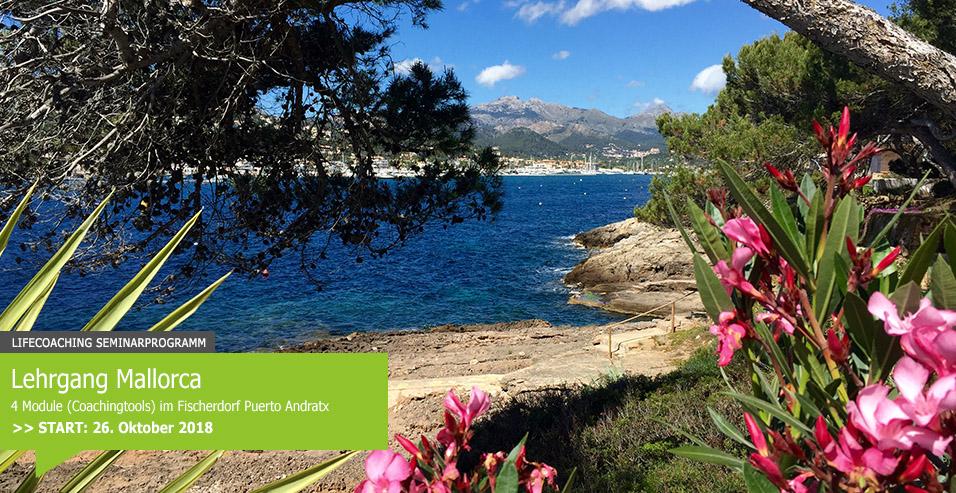 Office Mallorca